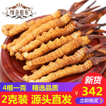 (2 g) cordyceps Genuine 18 new goods wild cordyceps Qinghai Yushudong worm summer Grass Total 8 articles