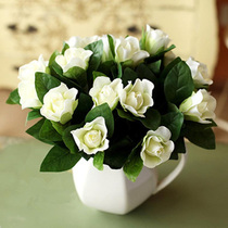 Gardenia seeds Four Seasons flowering perennial plants potted indoor balcony green flowers flowers and plants