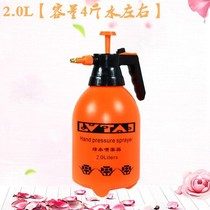 Indoor small spray pot air pressure spray kettle watering high pressure super-large capacity sprayer flower cultivation