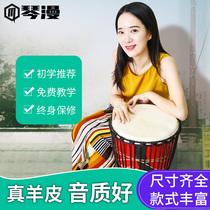 Qinman African drum Lijiang hand drum 8 inch 10 inch 12 inch children kindergarten adult introductory sheepskin drum