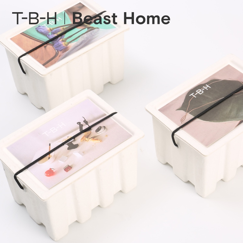 The BEAST/Fauvism Zhu Qian Photographic Works Artist Cooperation Series Fragrant Candles