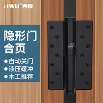 Westinghouse Invisible Door Hinge Hydraulic Buffer Automatic Close Closed Door Background Wall Dark Door Closed Spring Hinge