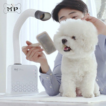 Memory Pet South Korea CRUZ pet multi-functional 360-degree advanced touch screen negative ion hairdryer