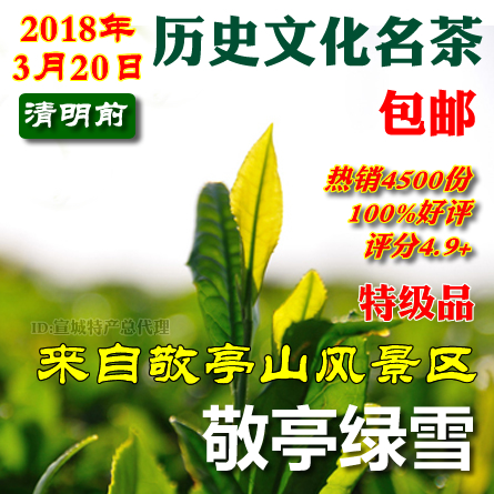 Jingting Green Snow 2019 Xuancheng specialty Jingting Mountain Tea Spring Tea Green Tea Canned 100g package