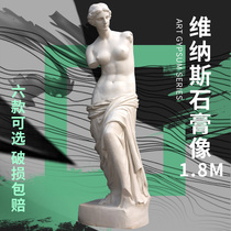 1 8M Venus body plaster statue figure decoration sculpture pendulum European ornaments large statue art teaching aids