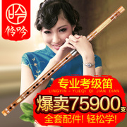 Ling Yin professional musical instrument playing the flute flute flute flute beginner students bitter refining Audi