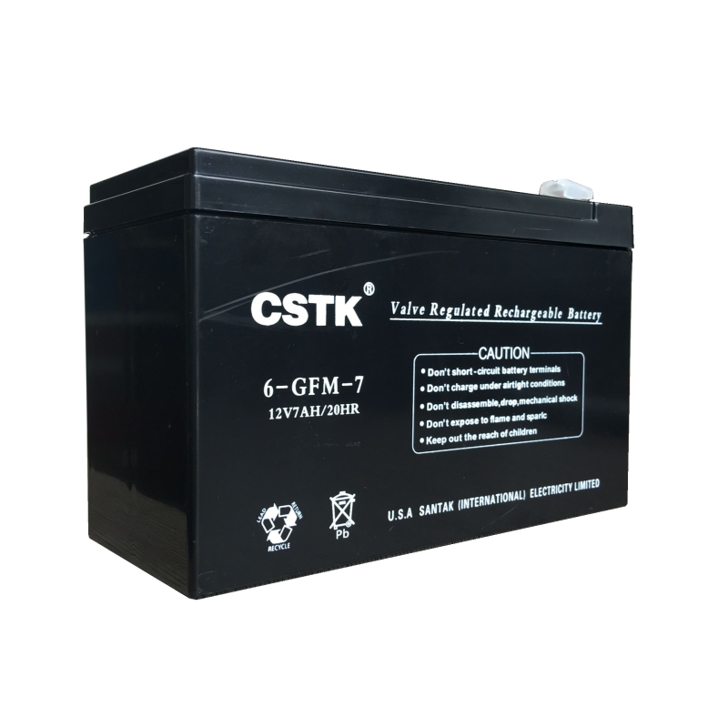 CSTK UPS power supply Internal lead-acid maintenance free battery 12V 7AH UPS battery 12V7AH