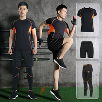 Lu Yifan fitness running suit Basketball quick drying gym short-sleeved morning running training clothing mens spring and summer