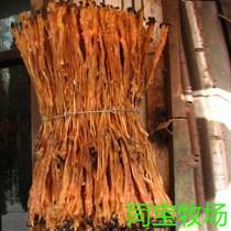 Tendon de moutons de prairie de Qinghai jinyintan naturellement séché sans écologie originale supplémentaire