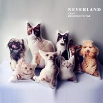 Neverland Alien Pet Pillow custom Photos Christmas Send friends private company group Purchase wonderful DIY