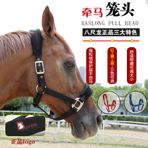 Eight foot Dragon Multicolor horse bridle accessories lead horse faucet with velvet horse cage set equestrian horse supplies horse equipment
