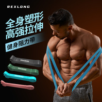 Fitness elastic band Male resistance band Tension rope Strength training Stretching support band Chest muscles Pull-up assistance