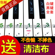 Electronic piano keyboard posted 88 key 61 key 54 key keyboard keys with staff notation transparent waterproof stickers