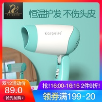 British karpelle childrens hair dryer low-E baby hair dryer baby special mini blow ass