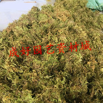 Dry moss grafting special moss Orchid planting moss grass turtle Winter Sleep and transport mat material