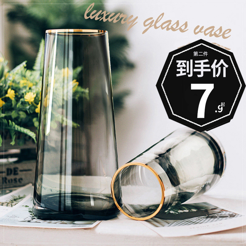 Light luxury tracing gold vase net red transparent glass living room flower ornament decoration creative simple Nordic water-raised flowers