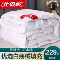 Пододеяльник пятизвездочный отель Белый гусиный пух гусиное одеяло зимнее одеяло утолщение теплое одеяло ядро полный одеяло двойной весна и осень