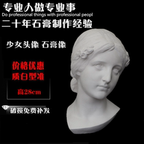H28cm girl plaster portrait sketch sketching art teaching aids model figure still life ornaments portrait sculpture