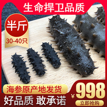 High standard maternal sea cucumber wild sea cucumber dry 250g dried ginseng 500 g 60 Head Liao Mixed Jin