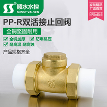 Double Hot Melt live one-way horizontal inverse PPR brass check valve water pipe 4 points 6 minutes 1 inch 20 25 32