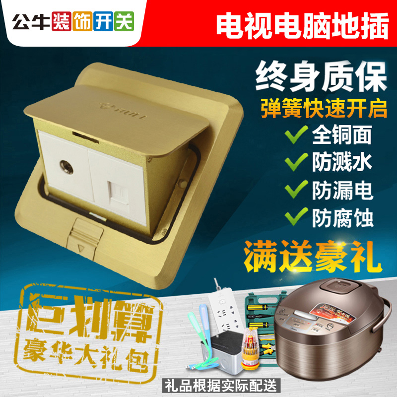 Bullock socket All-copper waterproof and undamped cable network multi-functional household floor computer TV socket