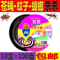 Genuine smoked fly incense household except fly kill fly incense flies drug mosquito incense box repellent mosquito wisp smoke-free mosquito plate