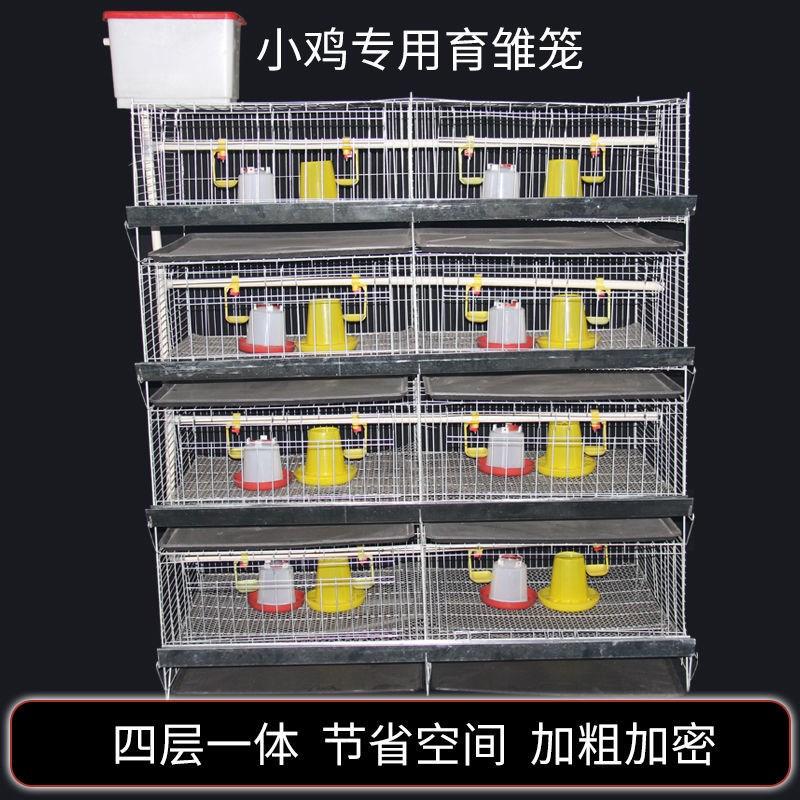 Полужирный культивируемый цыпленок клетка дома с зашифрованным выводком клетки синий перепелиный клетка куриный питомник утка клетка лудин куриная клетка