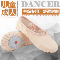 Dance shoes children soft bottom practice shoes adult male velvet body cat claw dancing shoes red white black ballet shoes