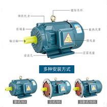 YX3 YE2 YE3-90S 90L 100L 112M 132M 160M-2 4 6 copper wire National standard motor present