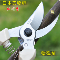 Imported horticultural scissors pruning shear branches scissors fruit tree tools garden hand scissors rough branches shear flower branches shear branching shears