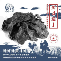 Nine steamed nine tanning cooked dihuang yellow jiaozuo wild cooked dihuang origin Nine sand free Dihuang tablets 500 grams g