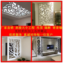Modern style ceiling lights with entrance background living room screen density board hollow partition lattice through carved plate