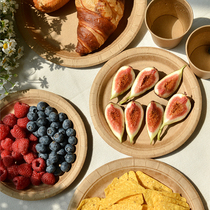 Picnic portable disposable plate dostart cup tableware paper towel spring outdoor camping bi prepared dessert fruit plate