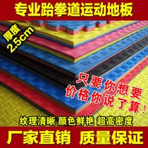 Factory Direct Taekwondo Mat 2.5 3.0 thickened anti-skid dance Wushu Taekwondo ground cushion height Dense