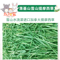 The 500g net weight of the imported grassland in the Rocky Mountain Snow-capped section is directly supplied to Timothy