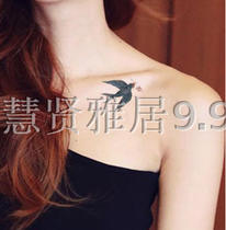 Waterproof tattoo sticker Swallows birds big dragonflies animal watercolors small fresh and simple long-lasting tattoos