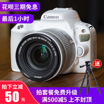 Canon Canon EOS 200D 800D entry-level white SLR women HD Travel Digital Camera