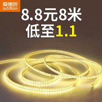 Edrand LED lamp with living room ceiling decorative light band colorful discoloration lamp strip outdoor waterproof RGB color Line lamp