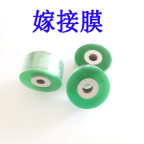 Graft film special film grafting strap fruit saplings wood banding tape tape does not need to tie self-bonding winding film