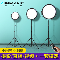 Repman S300 professional LED photography light Net red anchor live room beauty light Outdoor film and television portrait video dedicated lighting light Indoor studio fill light Clothing shooting soft light