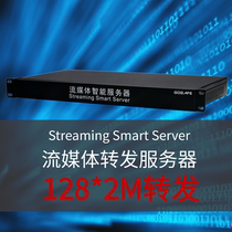 Embedded streaming media forwarding server HD surveillance codec video distributed one-to-many decoding display