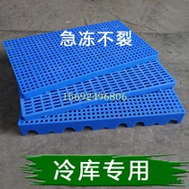 Thickened warehouse moisture-proof mat warehouse plate frozen warehouse plastic mat board refrigeration warehouse floor mat flooring flooring 託 plate