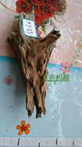 Fish tank decoration Rhododendron root sunken wood root landscape water banyan Tree wood Mossia real grass branches tree head