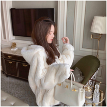 White Rabbit Fur Coat female winter lazy rabbit Korean version of loose short thick Foreign Air hat stand collar fur coat
