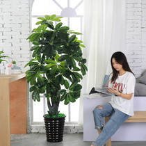Fake flower simulation rich tree decorative plants indoor fake potted living room flower large floor tree green plant plastic bonsai
