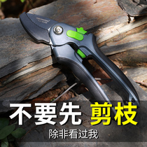 Flower scissors horticultural scissors home flower potted garden forest fruit tree pruning branches German pruning pruning