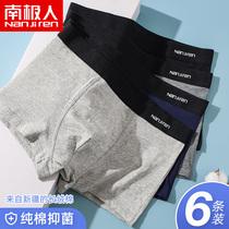 Antarctic pure cotton antibacterial mens underwear mens summer thin flat pants large size breathable four-corner shorts bottom pants