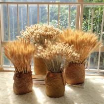 芈阳 天然草编花篮花器花瓶 麦穗大麦芦苇稻谷装饰摆饰 干燥花套装