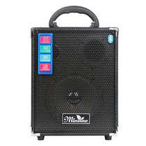 Famous Sen outdoor 30w tile charging rod Speaker square dance net red live ballad Electric wood Guitar singing stereo