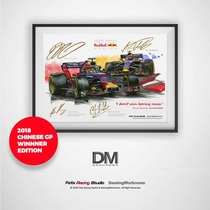 Daming X Silly Leopard leopard F1 racing illustration poster #004 Red Bull team two-car China station champion